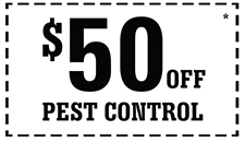 50_Off_PestControl