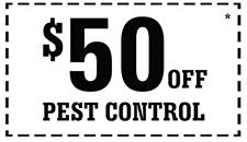 50_Off_PestControl
