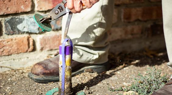 Termite Pest Control Services GGA Pest Texas