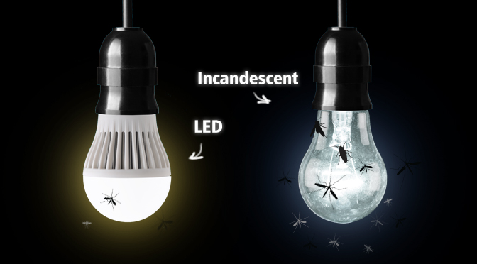 Led vs Incandescent Bugs Graphic GGA Pest Management