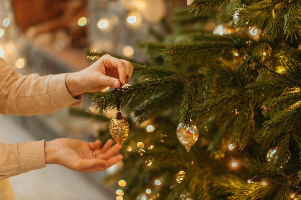 ring in the new year pest free holiday tips gga pest management