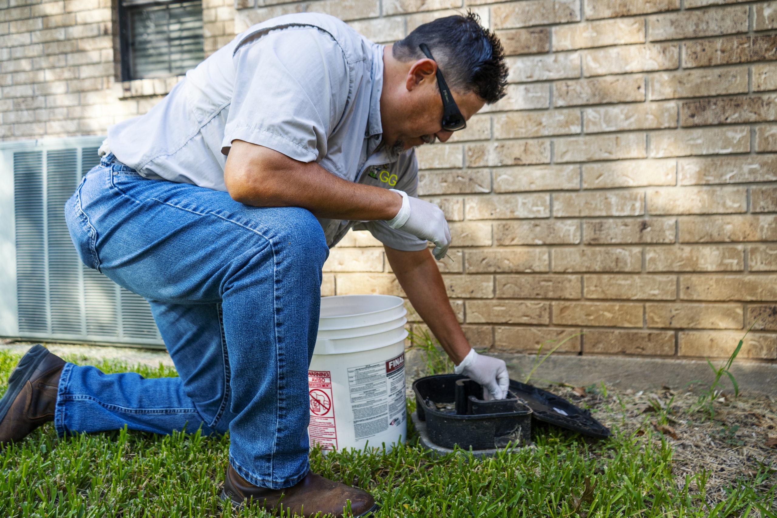 rodent control gga pest management texas