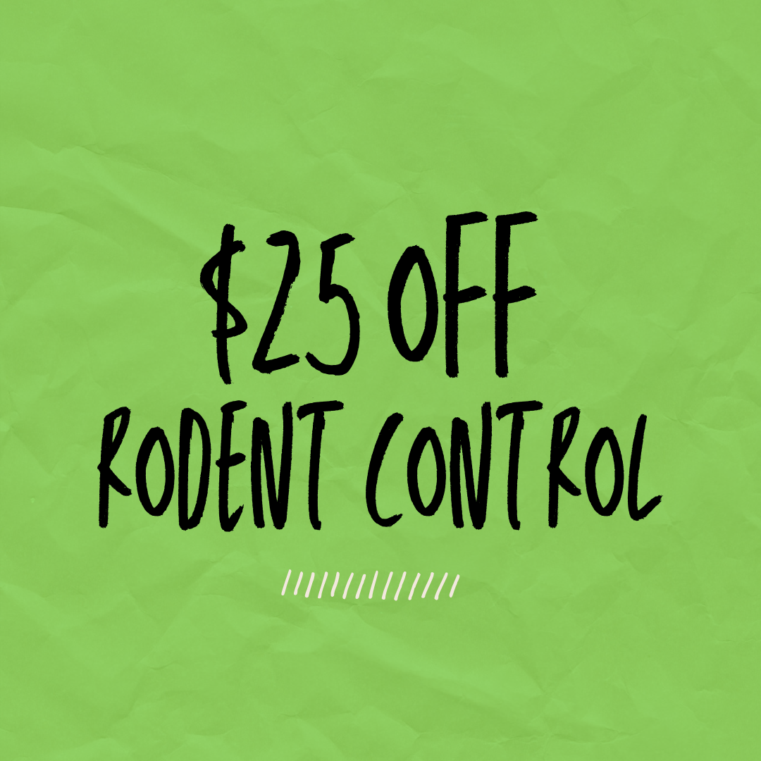 $25 off rodent control